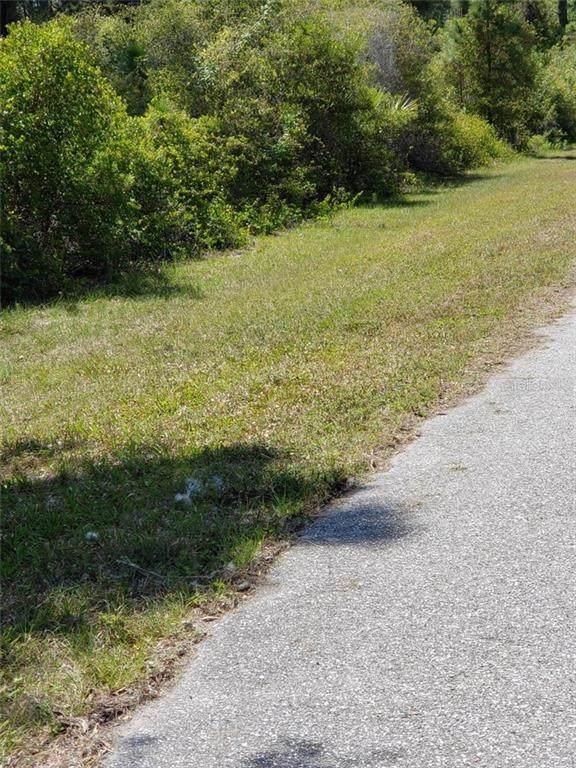 14043 Barbet Lane, Port Charlotte, FL 33981 (MLS #N6114718) :: Sarasota Home Specialists