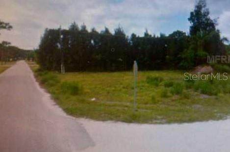 Olive Street, Englewood, FL 34223 (MLS #N6114853) :: The BRC Group, LLC