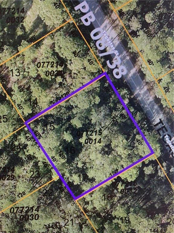Tegastas Street, North Port, FL 34287 (MLS #N6114855) :: The Robertson Real Estate Group