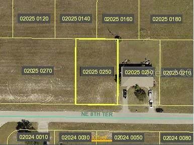 1329 NE 8TH Terrace, Cape Coral, FL 33909 (MLS #N6115176) :: Armel Real Estate