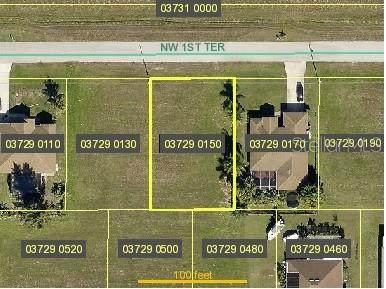 2016 NW 1ST Terrace, Cape Coral, FL 33993 (MLS #N6115177) :: Armel Real Estate