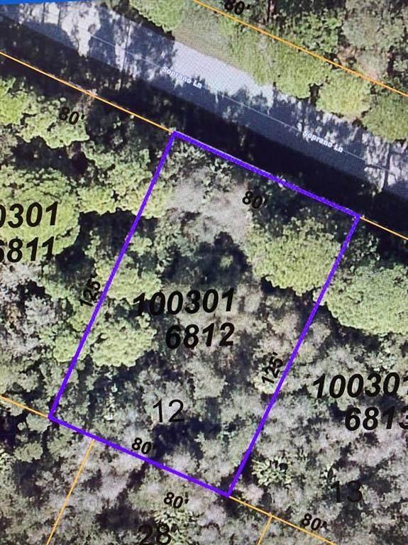Soprano Lane, North Port, FL 34286 (MLS #N6115394) :: The Robertson Real Estate Group