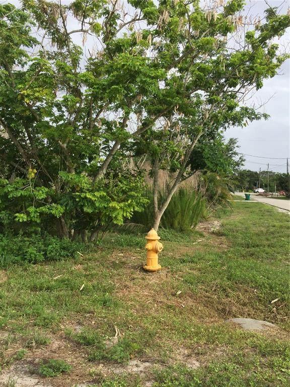 215 Laverne Street, Port Charlotte, FL 33980 (MLS #N6116029) :: Cartwright Realty
