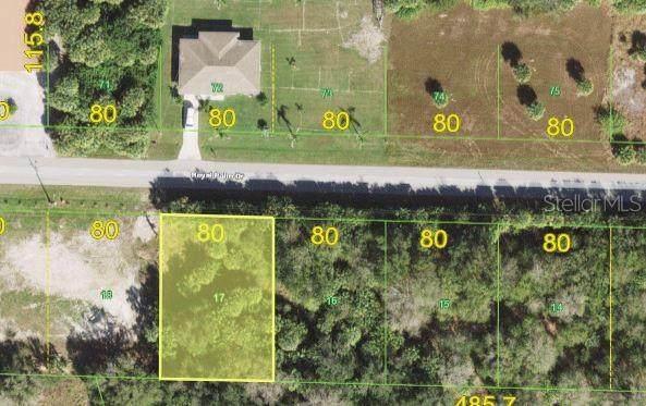 28411 Royal Palm Drive, Punta Gorda, FL 33982 (MLS #N6116726) :: EXIT Gulf Coast Realty