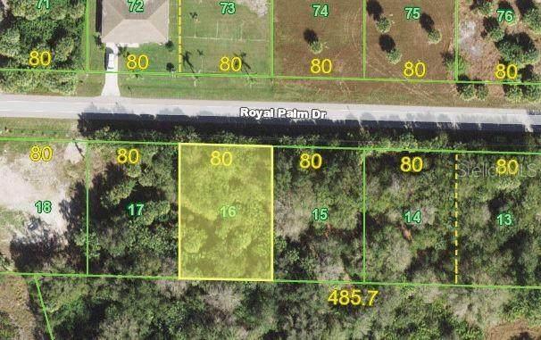 28419 Royal Palm Drive, Punta Gorda, FL 33982 (MLS #N6116728) :: EXIT Gulf Coast Realty