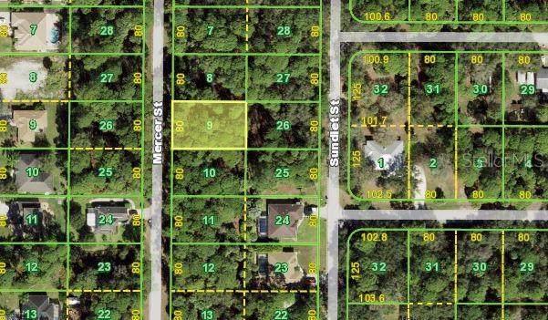 106 Mercer Street, Port Charlotte, FL 33954 (MLS #N6117298) :: Globalwide Realty