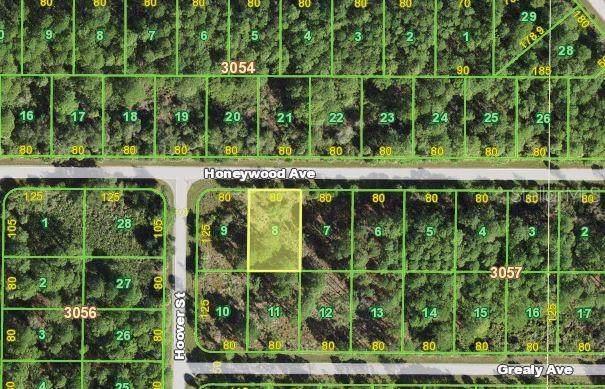 13487 Honeywood Avenue, Port Charlotte, FL 33953 (#N6117650) :: Caine Luxury Team