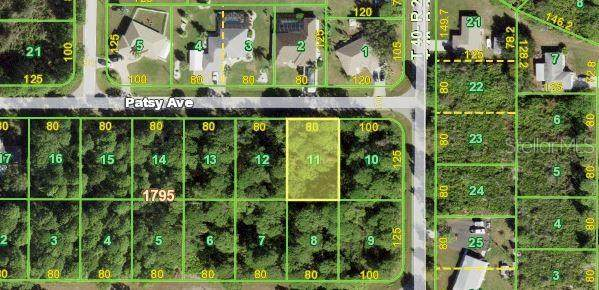12519 Patsy Avenue, Port Charlotte, FL 33981 (MLS #N6117651) :: Lockhart & Walseth Team, Realtors