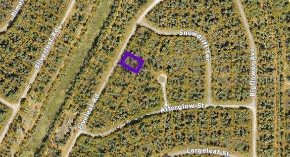 Lot 7 Fiveleaf Road, North Port, FL 34288 (MLS #N6117749) :: Gate Arty & the Group - Keller Williams Realty Smart