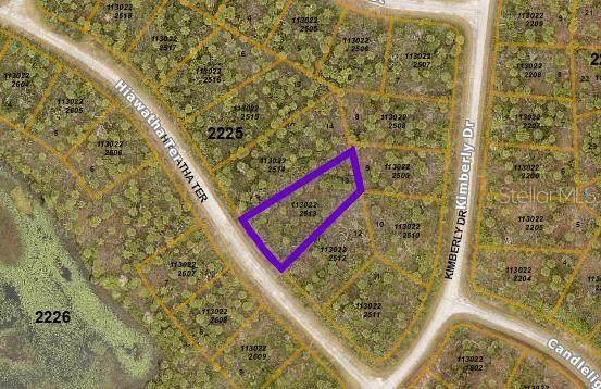 Hiawatha Terrace, North Port, FL 34288 (MLS #N6117752) :: Gate Arty & the Group - Keller Williams Realty Smart