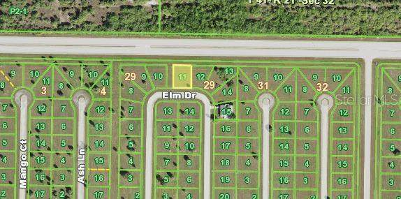 21 Elm Drive, Placida, FL 33946 (MLS #N6117815) :: Carmena and Associates Realty Group
