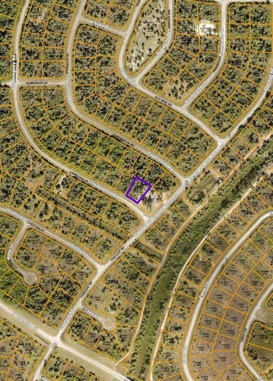 Crimsonglory Road, North Port, FL 34288 (MLS #N6117984) :: Everlane Realty
