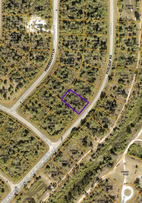Fiveleaf Road, North Port, FL 34288 (MLS #N6117988) :: Everlane Realty