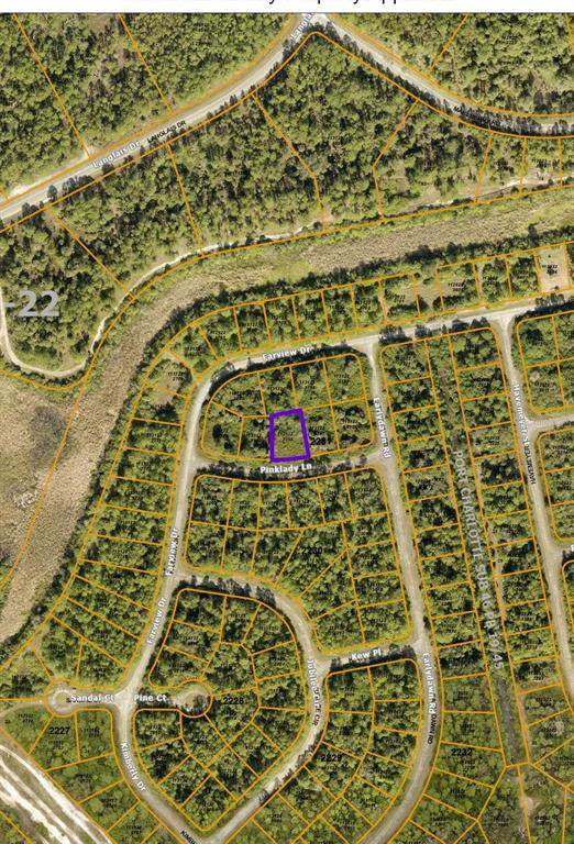 Pinklady Lane, North Port, FL 34288 (MLS #N6117995) :: Everlane Realty