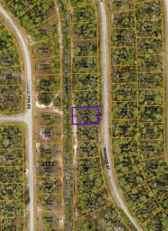 Ironside Street, North Port, FL 34288 (MLS #N6117996) :: Delgado Home Team at Keller Williams