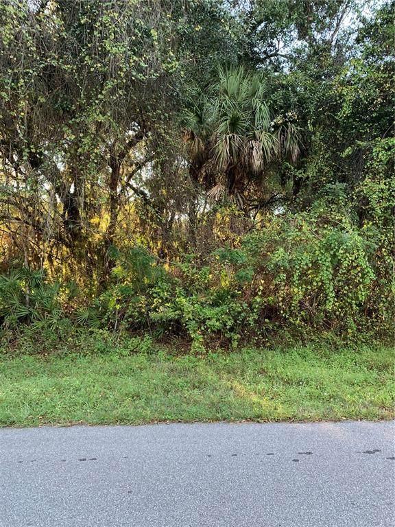 153 Dorman Street, Port Charlotte, FL 33953 (MLS #N6118263) :: The Heidi Schrock Team