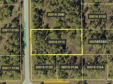 902 Columbus Avenue, Lehigh Acres, FL 33974 (MLS #O5555068) :: Premium Properties Real Estate Services