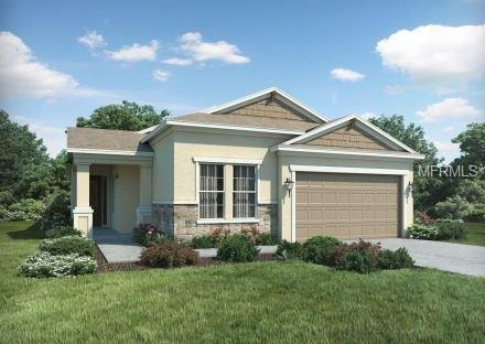 10665 Cardera Drive, Riverview, FL 33578 (MLS #O5558049) :: The Duncan Duo Team
