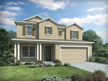 4736 Rolling Green Drive, Wesley Chapel, FL 33543 (MLS #O5558148) :: Zarghami Group