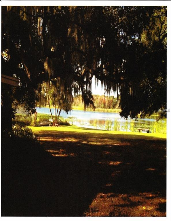 1915 S Lakemont Avenue, Winter Park, FL 32792 (MLS #O5560724) :: Griffin Group