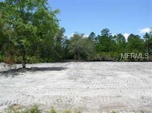 44 Keeble Avenue, Debary, FL 32713 (MLS #O5563501) :: Mid-Florida Realty Team