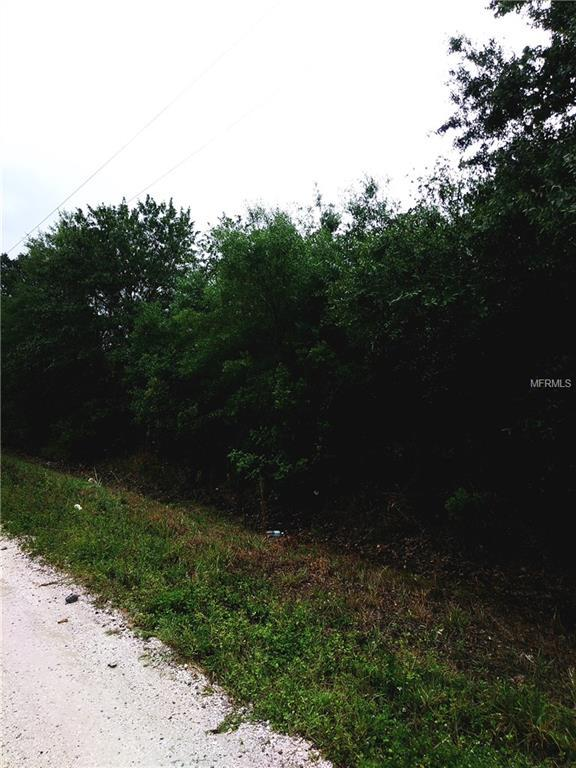 2875 W Shula Road, Avon Park, FL 33825 (MLS #O5563612) :: Homepride Realty Services