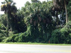 88 Dirksen Drive, Debary, FL 32713 (MLS #O5563811) :: Mid-Florida Realty Team
