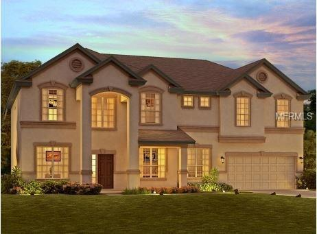 10502 Cardera Drive, Riverview, FL 33578 (MLS #O5564025) :: Team Turk Real Estate