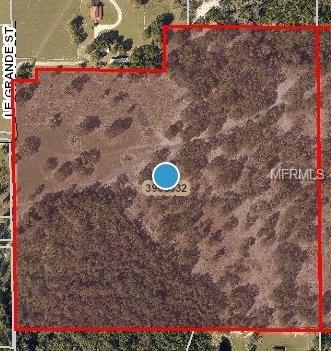 Le Grande Street, Umatilla, FL 32784 (MLS #O5567263) :: Premium Properties Real Estate Services