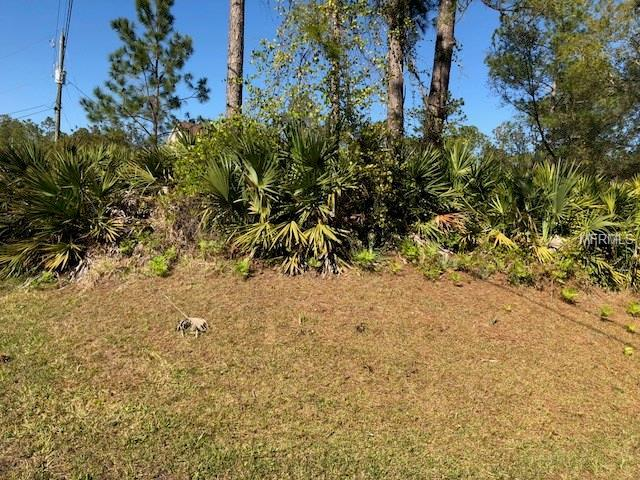 4 Seton Place, Palm Coast, FL 32164 (MLS #O5569117) :: Team Pepka