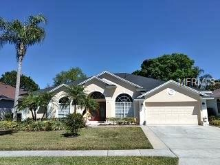 10021 Crystalline Court, Orlando, FL 32836 (MLS #O5569391) :: Mark and Joni Coulter | Better Homes and Gardens