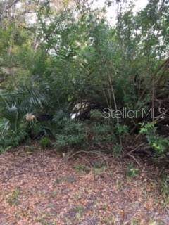 Christmas Cemetery Road, Christmas, FL 32709 (MLS #O5701215) :: The A Team of Charles Rutenberg Realty