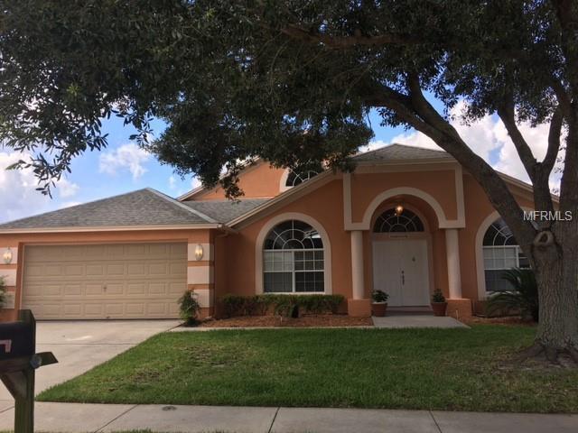18114 Sweet Jasmine Drive, Tampa, FL 33647 (MLS #O5702042) :: Delgado Home Team at Keller Williams