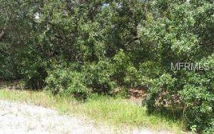 210 Crystal Lake Drive, Lake Placid, FL 33852 (MLS #O5707859) :: The Duncan Duo Team