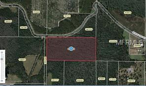 Berry Grove Road, Clermont, FL 34714 (MLS #O5712865) :: The Price Group