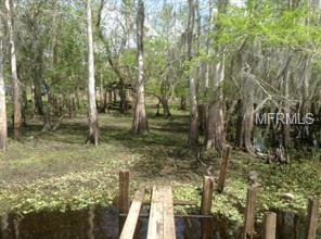 1289 Tall Pines Drive, Osteen, FL 32764 (MLS #O5714555) :: Griffin Group