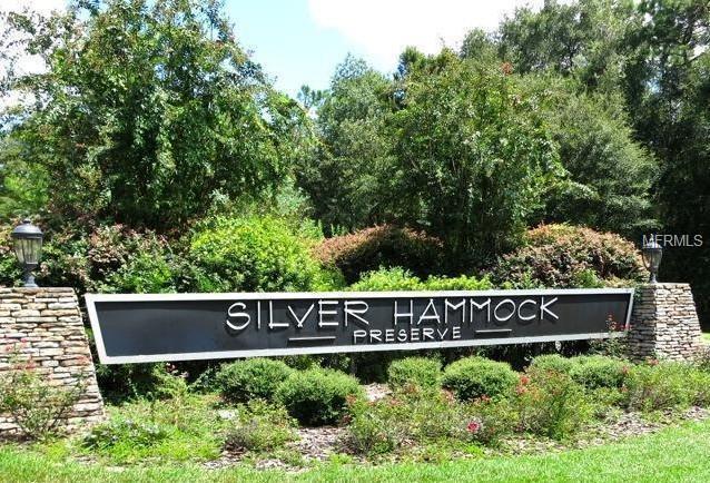 NE 43 LANE Road, Silver Springs, FL 34488 (MLS #O5715285) :: The Duncan Duo Team