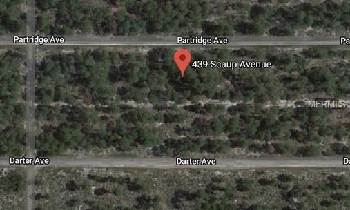 439 Scaup Avenue, Sebring, FL 33872 (MLS #O5723860) :: The Duncan Duo Team