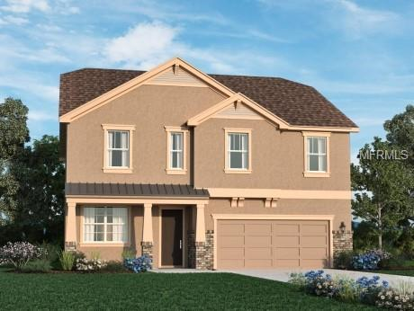 2501 Sky Stone Court, Oakland, FL 34787 (MLS #O5729118) :: The Light Team