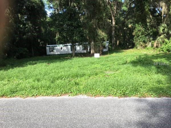 144 Georgetown Point Road, Georgetown, FL 32139 (MLS #O5742480) :: Homepride Realty Services