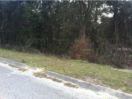1155 S Cornell Terrace, Inverness, FL 34452 (MLS #O5742928) :: The Duncan Duo Team