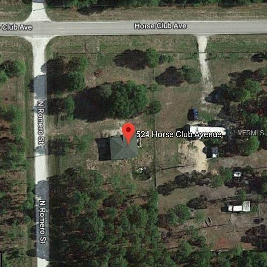 524 Horse Club Avenue, Clewiston, FL 33440 (MLS #O5745443) :: The Duncan Duo Team