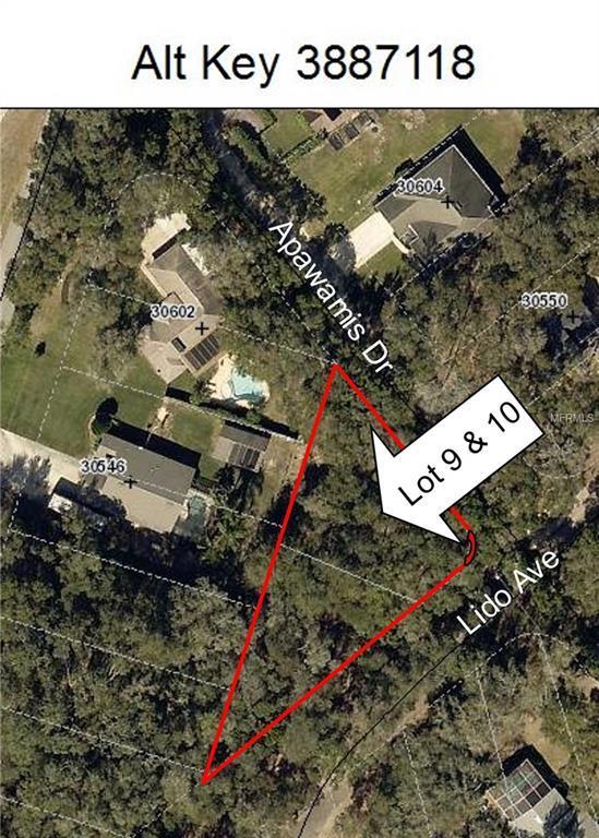 Apawamis Drive, Mount Plymouth, FL 32776 (MLS #O5745694) :: Delgado Home Team at Keller Williams