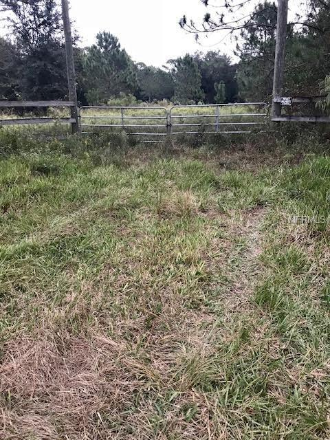 155 Deer Run Road, Osteen, FL 32764 (MLS #O5746189) :: Delgado Home Team at Keller Williams