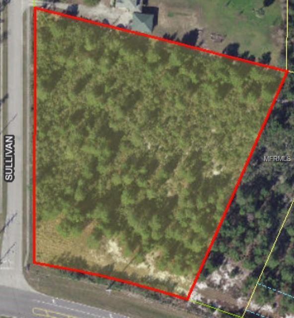 Osceola Polk Line Road, Davenport, FL 33896 (MLS #O5746335) :: Gate Arty & the Group - Keller Williams Realty