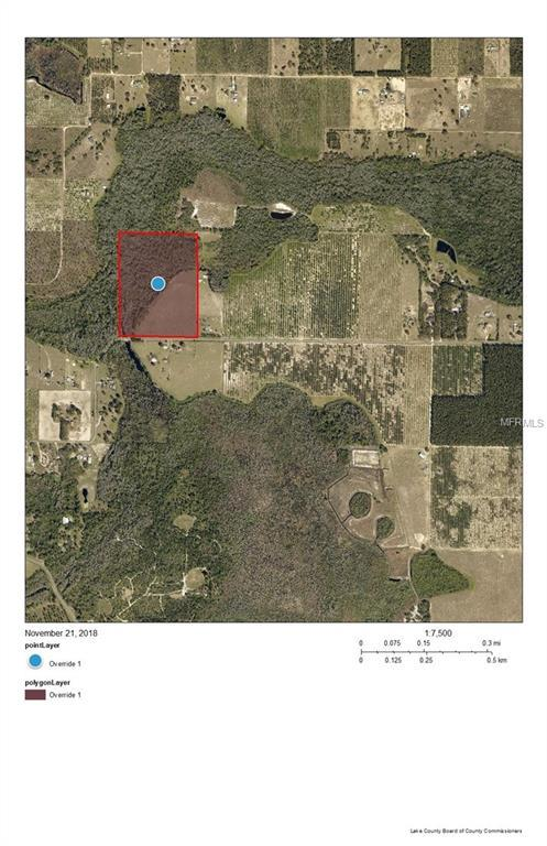 Dwights Road, Clermont, FL 34714 (MLS #O5748093) :: Mark and Joni Coulter | Better Homes and Gardens