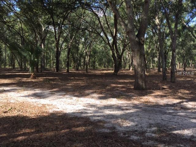 Unity Drive, Fruitland Park, FL 34731 (MLS #O5750204) :: The Duncan Duo Team