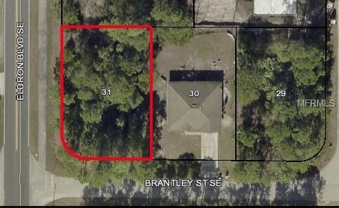 431 Brantley Street SE, Palm Bay, FL 32909 (MLS #O5758499) :: The Duncan Duo Team