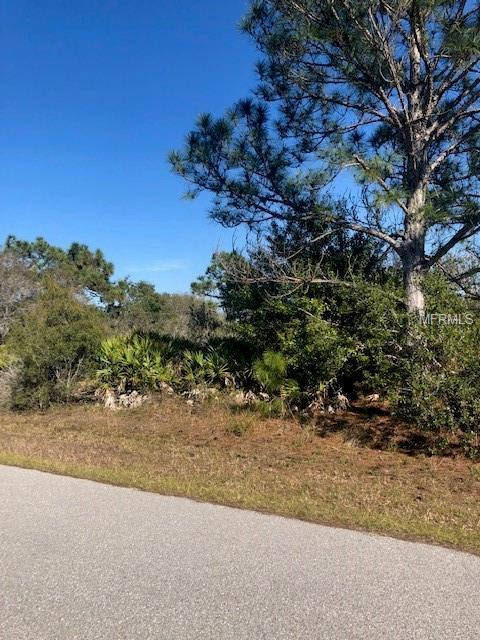 4392 Mclean Street, Port Charlotte, FL 33981 (MLS #O5758530) :: Mark and Joni Coulter | Better Homes and Gardens