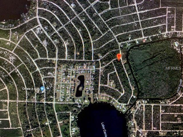 1136 Greenfield Street, Lake Placid, FL 33852 (MLS #O5761422) :: The Duncan Duo Team